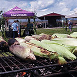 Corn Roast & Farm Tour